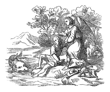 Vintage drawing or engraving of biblical story of Tobias and angel Raphael and the fish to cure his father.Bible, Old Testament, Jonah 2. Biblische Geschichte , Germany 1859.