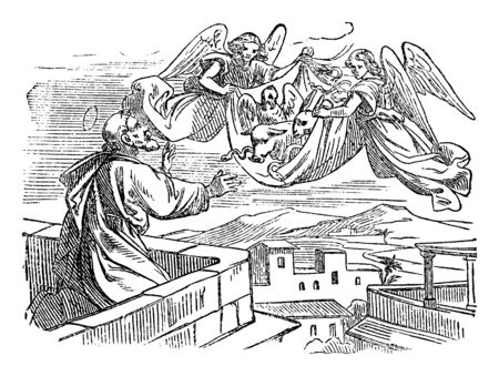 Antique vintage biblical religious engraving or drawing of story of vision of saint apostle Simon Peter and his vision of sheet with animals carried to be eaten.Bible, New Testament,Acts 10. Biblische Geschichte , Germany 1859. 向量圖像