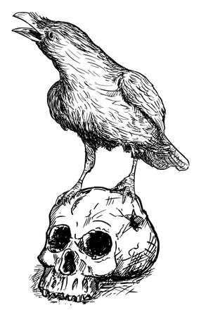 Black Common Raven Bird Standing on Human Skull. Vector Drawing or Illustration Ilustração