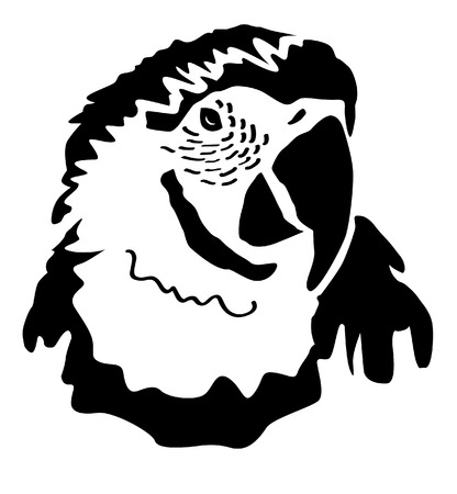ara: Head ARA - Parrot Psittaciformes Illustration