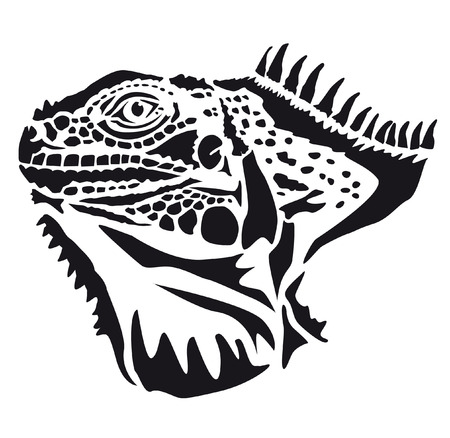 oviparous: Head of iguana - lizard Sauria