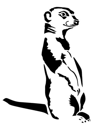 carnivora: Black and white drawing of the beast meerkats Carnivora