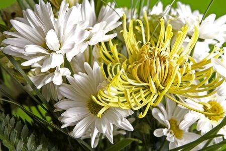 beautiful bouquet of mixed flowers white and yellow  Stock Photo - 813169