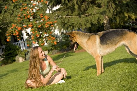 sheppard: pretty brunette model playing with her german sheppard
