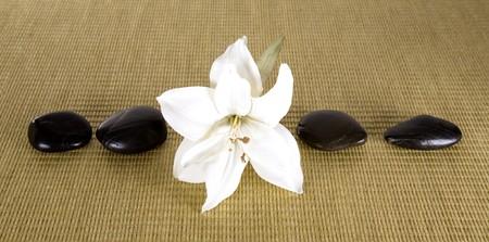spa items  flower and rocks arranged as group Banco de Imagens