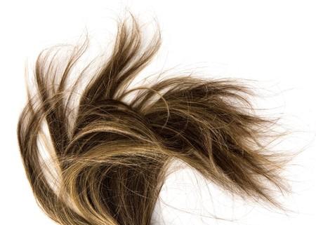 격리 된 배경에 긴 갈색 머리 스타일