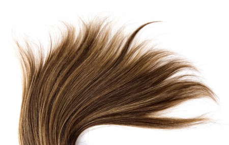 long brown hair style on white isolated background Stock Photo - 4443330