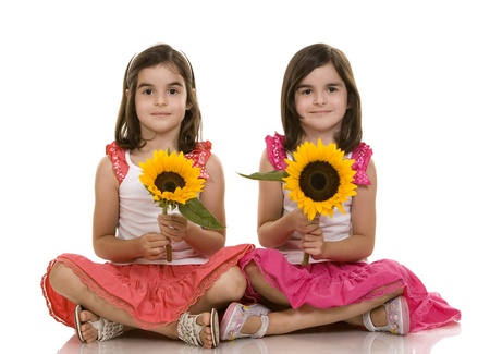 identical: pretty brunettes twins sitting on white isolated background
