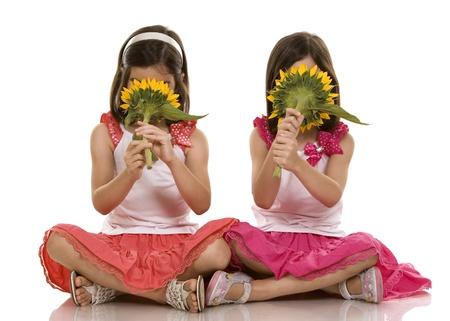 bambine gemelle: bella gemelli brune seduto su sfondo bianco isolato