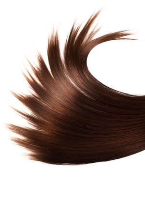 close up: human brown hair on white isolated background