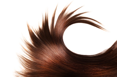 白い背景と分離人間の茶色の髪