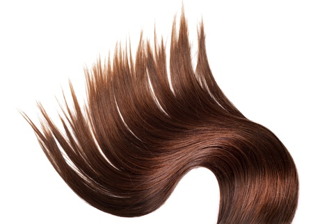 human brown hair on white isolated background Stock Photo - 12176979