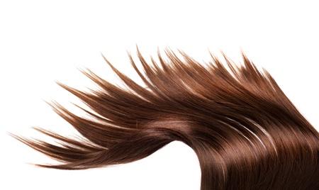 Menschen braune Haare isoliert auf weißem Hintergrund Standard-Bild - 12176941