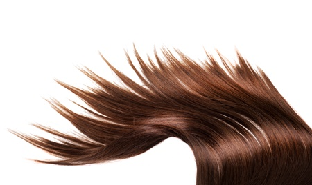 menselijke bruin haar op een witte geïsoleerde achtergrond