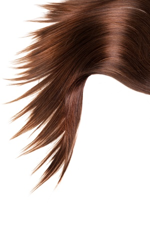 human brown hair on white isolated background Stock Photo - 12176943