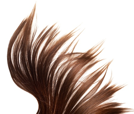 human brown hair on white isolated background Stock Photo - 12649014