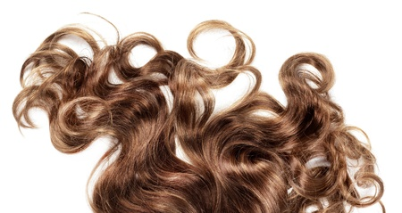 salon background: human brown hair on white isolated background