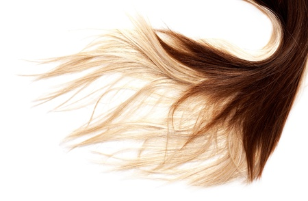 human brown and blonde hair on white isolated background 版權商用圖片