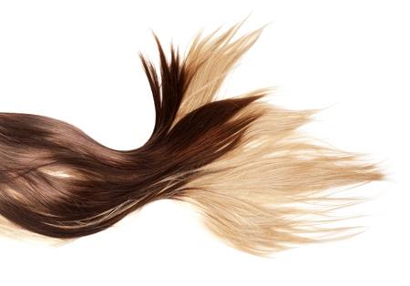 texture capelli: umana marrone e capelli biondi su sfondo bianco isolato Archivio Fotografico
