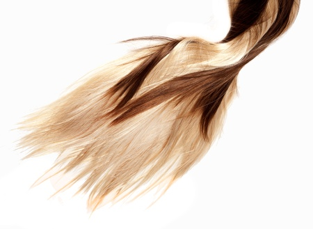 human brown and blonde hair on white isolated background photo