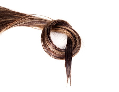 human brown hair on white isolated background Stock Photo - 17627512