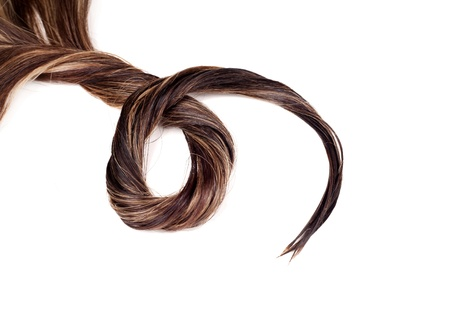 human brown hair on white isolated background Stock Photo - 17627514