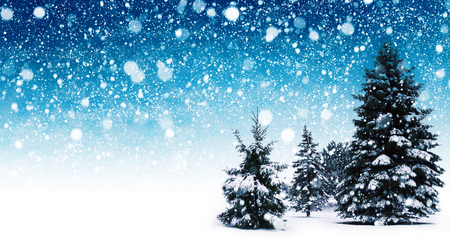 Winter snow background with trees. Beautiful Christmas and New Year abstract.