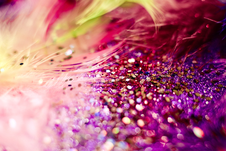 Soft feather with sparkles with artistic bright light and shadows. Soft blurred background of artistic close-up glitter macro image.