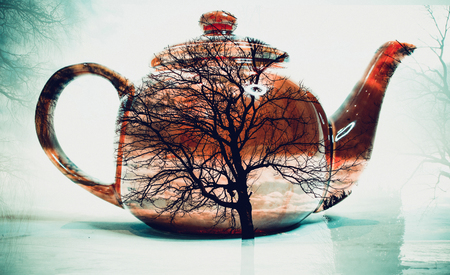 green double exposure of nature and of tea pot