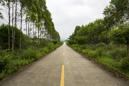 road at countryside Stock Photo