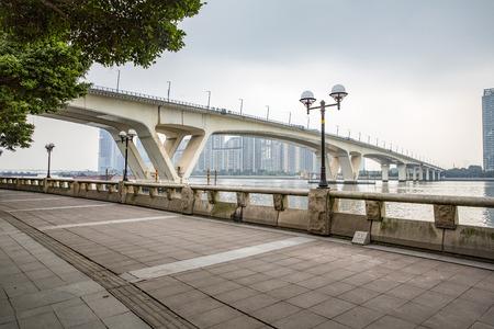 riverside trees: city landscape