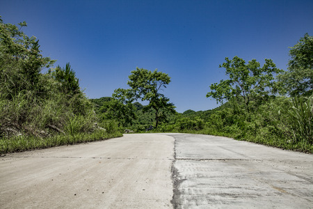Landscape scenery view of rural area with an asphalt road and trees alongside
