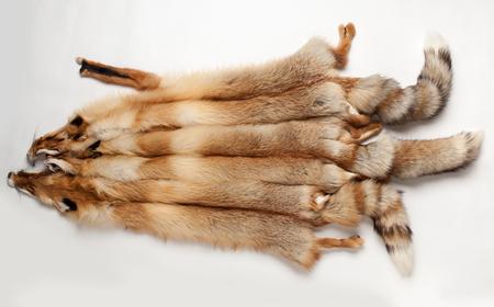 three fluffy fox skin lying on a white background Stock Photo