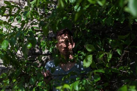 are hidden: Man hidden in green bushes Stock Photo