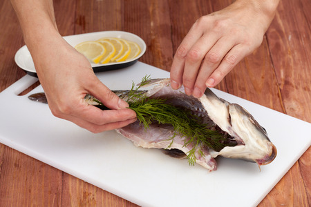 food stuff: Food. Preraring fish. Womans hands stuff a fish with a dill on a white board Stock Photo
