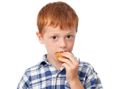 galleta gengibre: Close up a cute ginger boy eating a cookie, isolated on white background