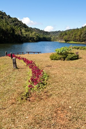 Flower line to reservoir