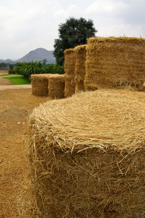Country straw