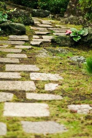 Japans Walkway