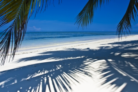 Tropical white sand beach with coconut trees, deep blue sky and turquoise waters.  photo