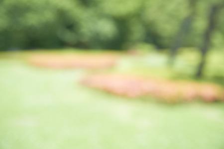 defocus: Garden background (Defocus)