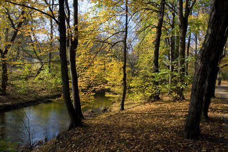 autumn park Stock Photo - 3792947