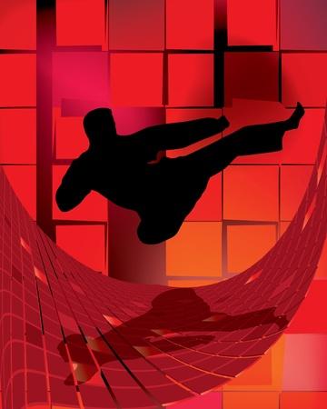 the marshal: illustration of karate