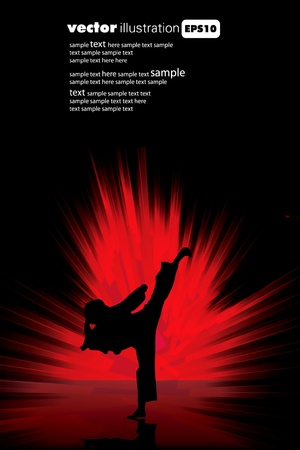 martial art: Karate poster  Illustration