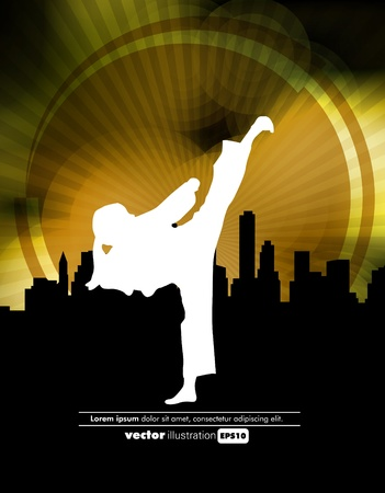 Sports. Karate illustartion Vector