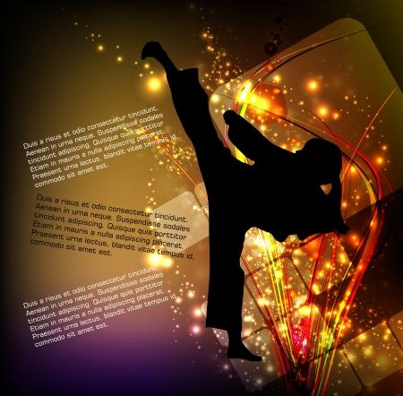 Karate  vector illustration Vector