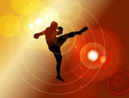 Karate  vector illustration Stock Vector - 14338323