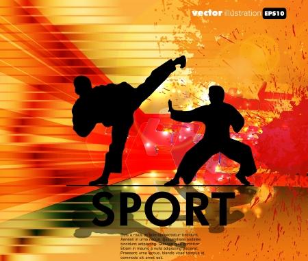 combat: Karate illustration Illustration