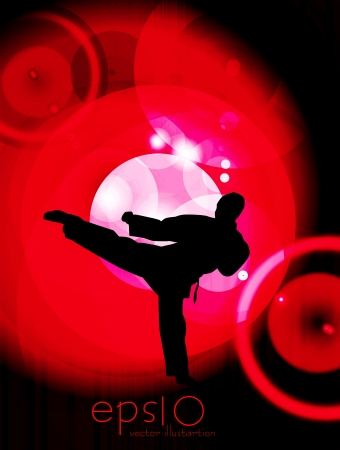 Martial arts vector  Vector