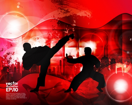 Karate illustration Stock Vector - 16937521